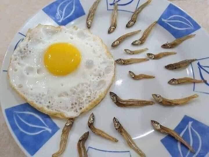 계란후라이.jpg