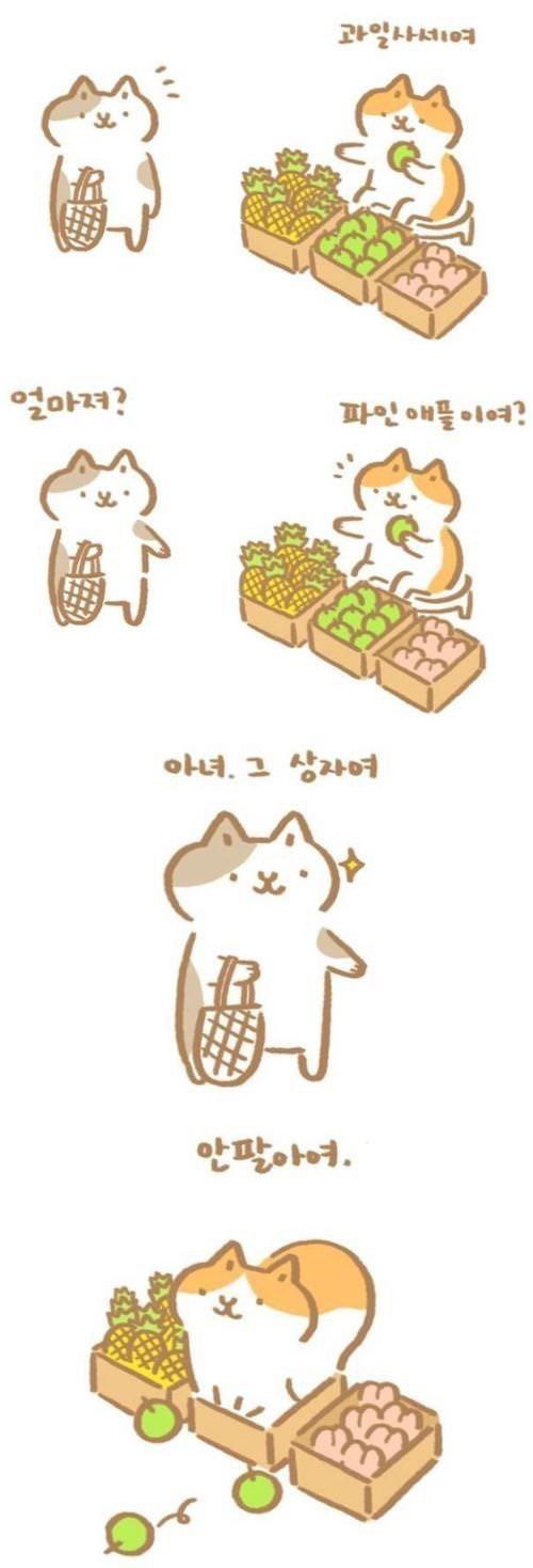 과일가게 고양이 만화.jpg
