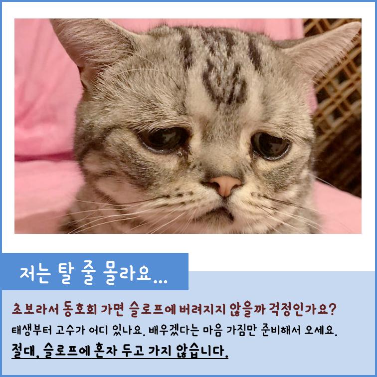 소개02.png